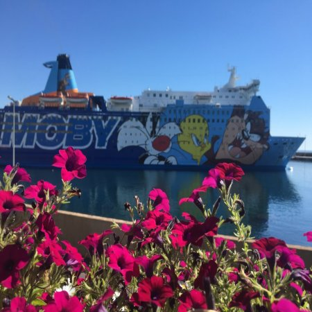 Moby lines Livourne Olbia
